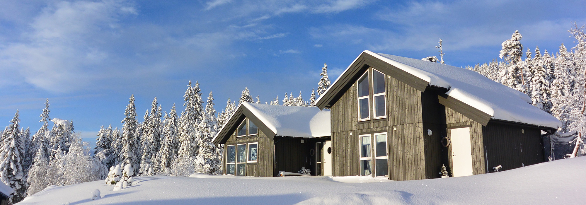 Vinter Slideshow 200x700